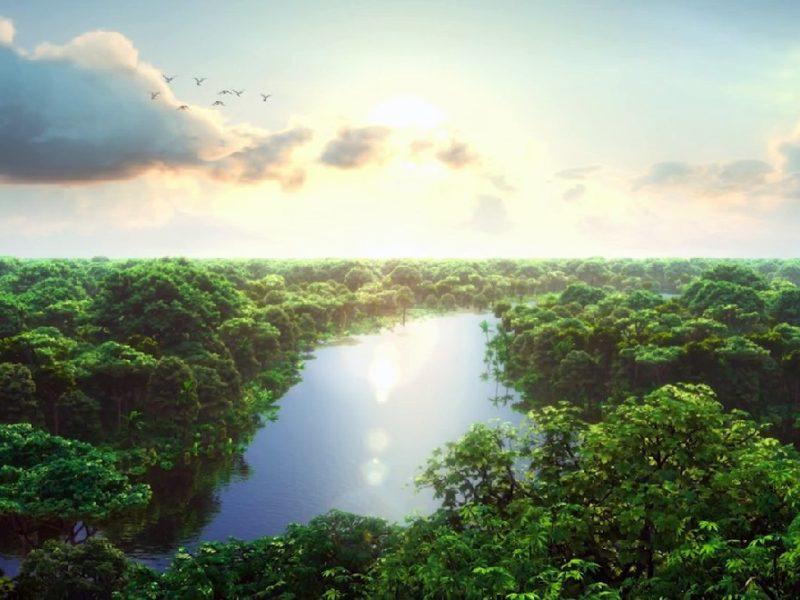 De Mooiste Natuurgebieden Van Brazilië
