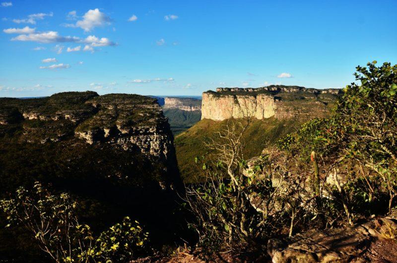 Ongerepte Natuurgebieden Brazilië