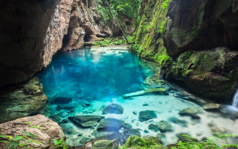 Snorkelen In Brazilië