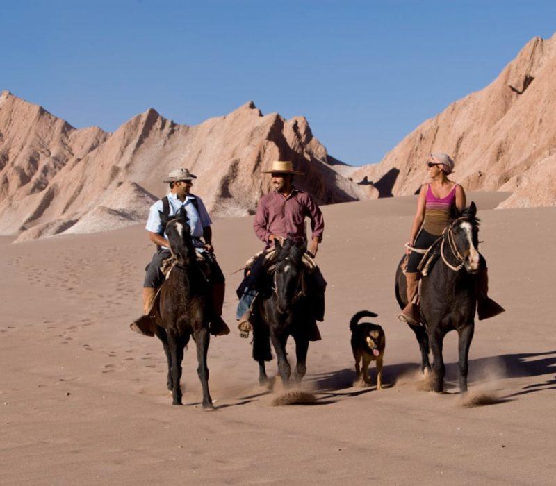 Noord Chili Atacama Woestijn