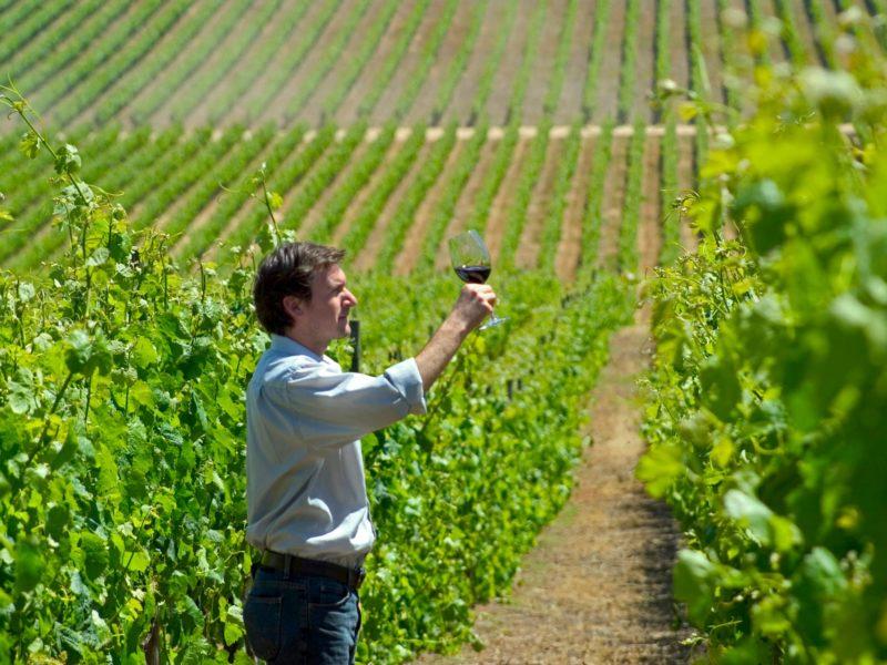 Argentijnse Wijnproeven In Mendoza