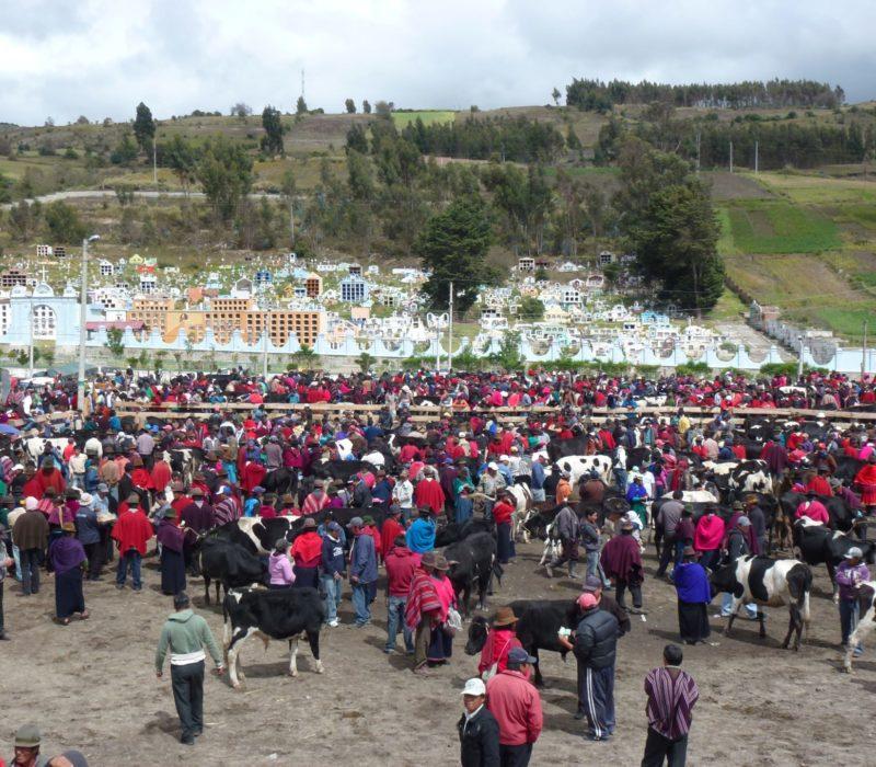 Handelen Op De Markt In De Andes Van Ecuador