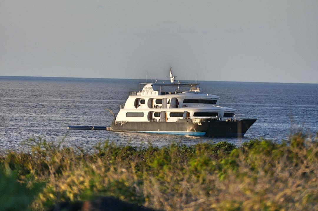 Luxe Galapagoscruise Petrel