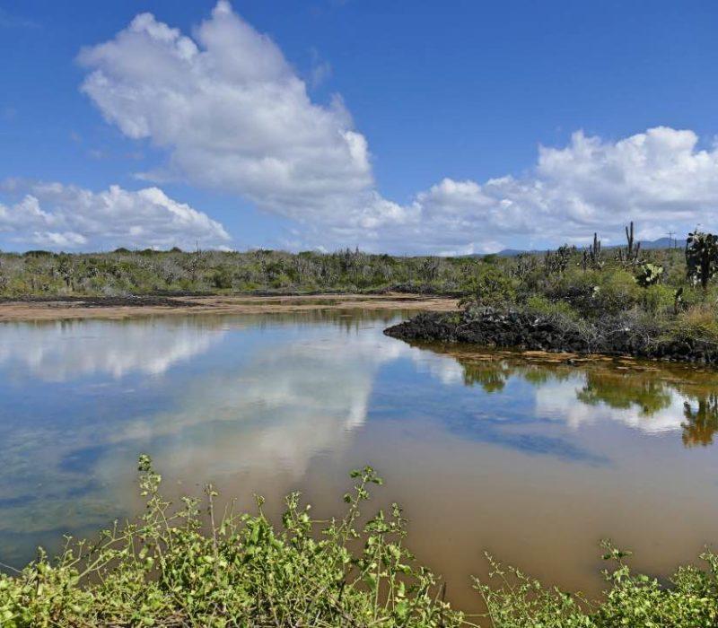 Galapagos_Santa_Cruz_Meer