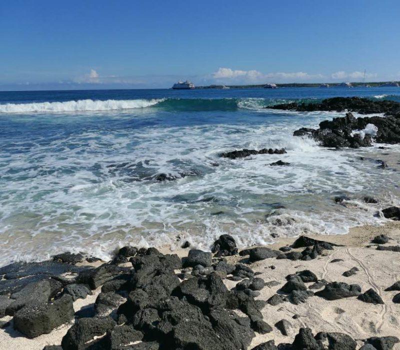 Galapagos_Santa_Cruz_Strand