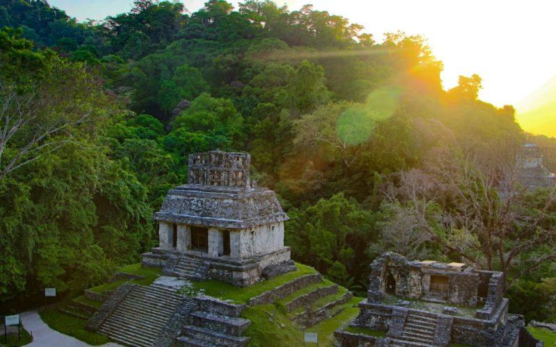 Maya Tempels Van Palenque In Mexico