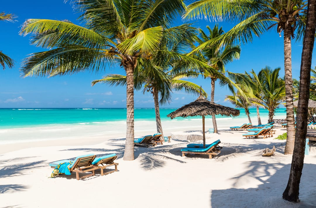 Mexico holbox strand palboom