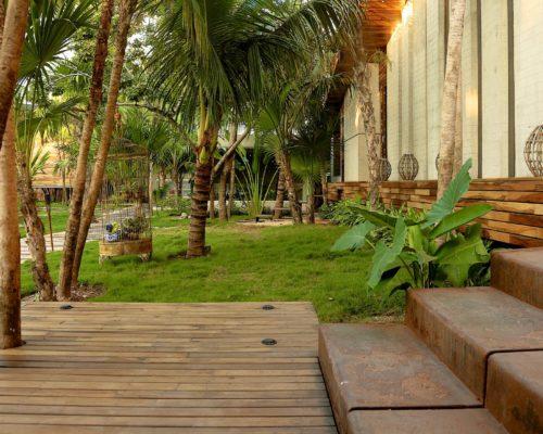 Palmbomen En Strand Bij Be Tulum
