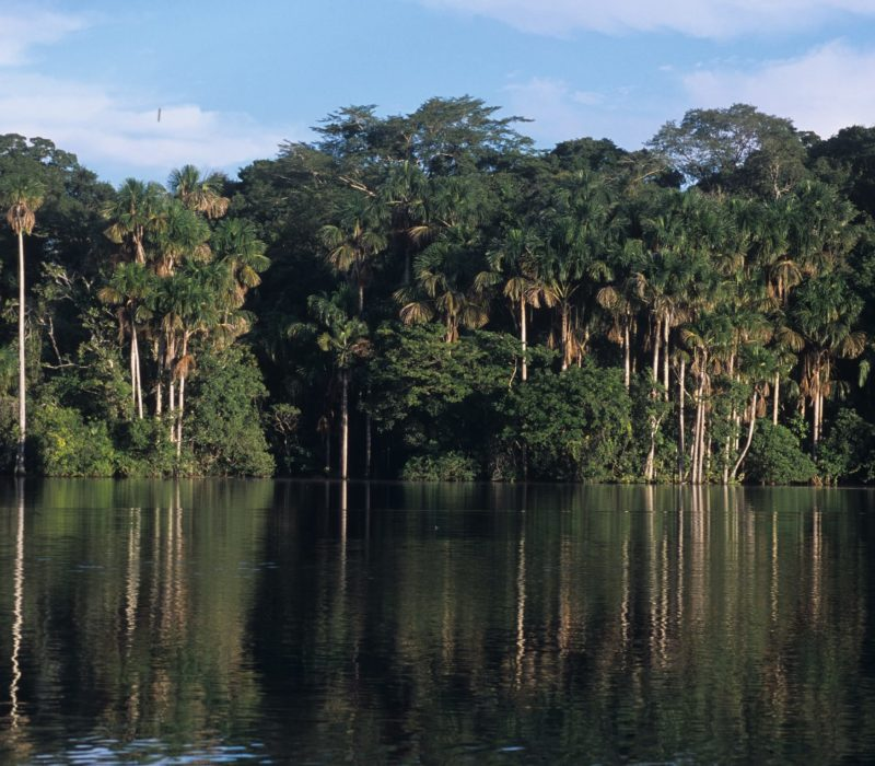 Peru Amazone