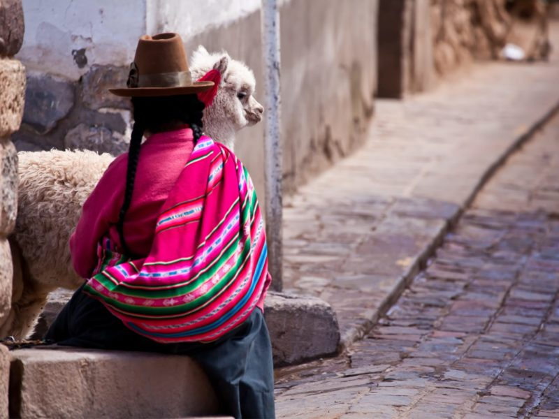 Meisje Met Lama In Cuzco Peru