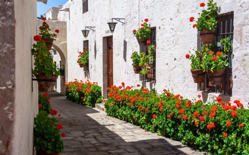 Peru_Arequipa_Santa_Catalina_Klooster