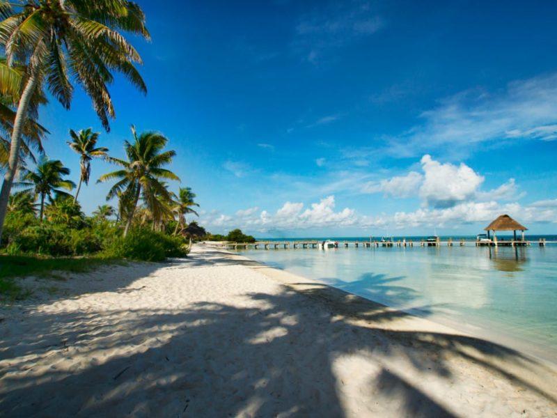 Isla Mujeres Strand En Palmbomen
