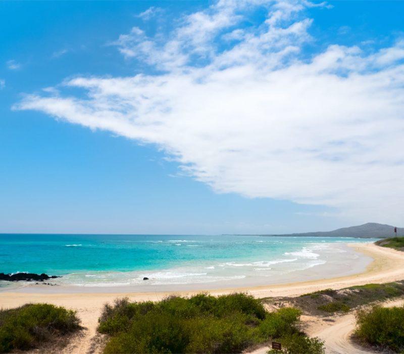 Strand Bij Isabela Op De Galapagoseilanden