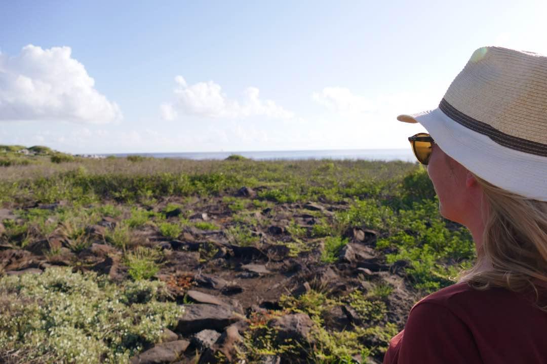 Espanola Island vulkanisch eiland