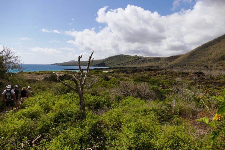 Galapagoseiland Groene Heuvels