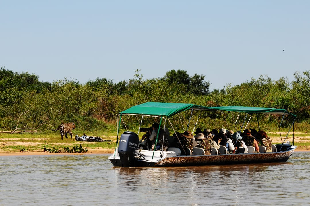 Brazilië boottour naar de jaguar
