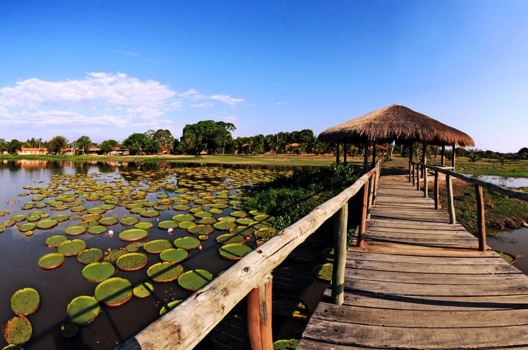Pantanal uitzicht over het moerasgebied