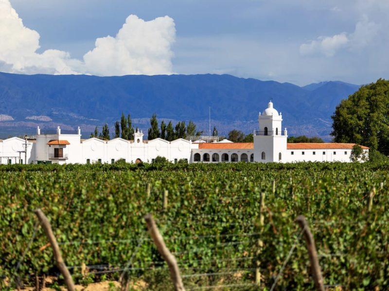 Wijn In De Uco-vallei In Argentinië