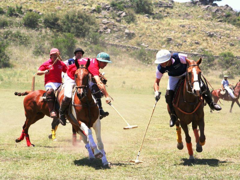 Argentinië Estancia Los Potreros Polo Sport