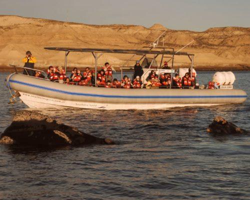 Activiteiten Bij Estancia El Pedral