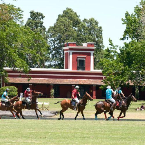 Polo Wedstrijd Op De Pampa In Argentinië