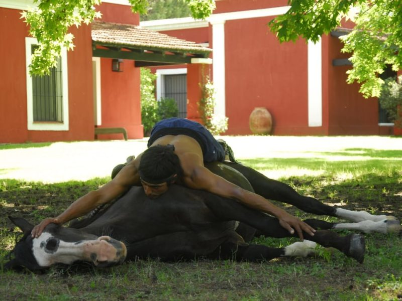 Reizen Door Argentinië Pampa Estancia La Bamba De Areco Paardenshow