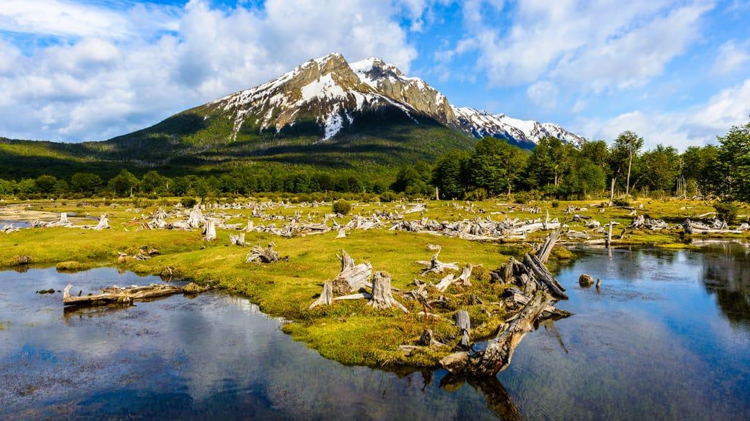 Argentinie Ushuaia nationaal park Tierra del Fuego