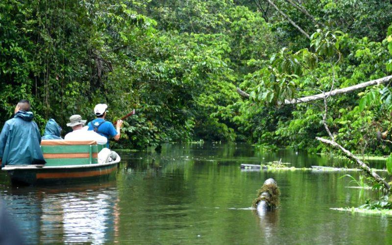 Droomreis Naar De Amazone Van Ecuador Kanotocht