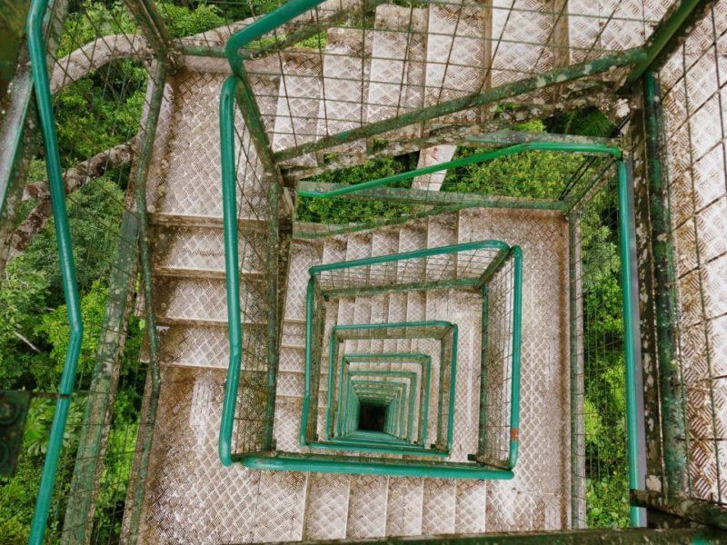 Amazone Ecuador Uitkijktoren