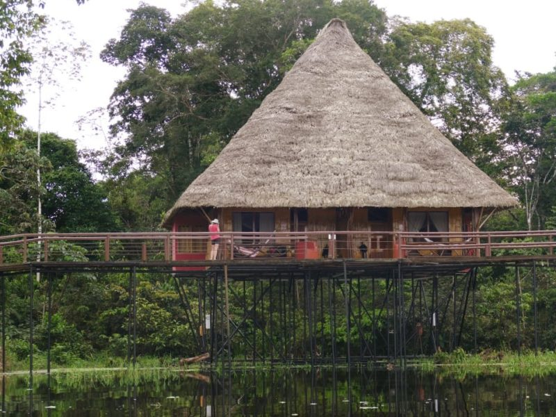 Ecuador Napo Wildlife Center Suite Cabin