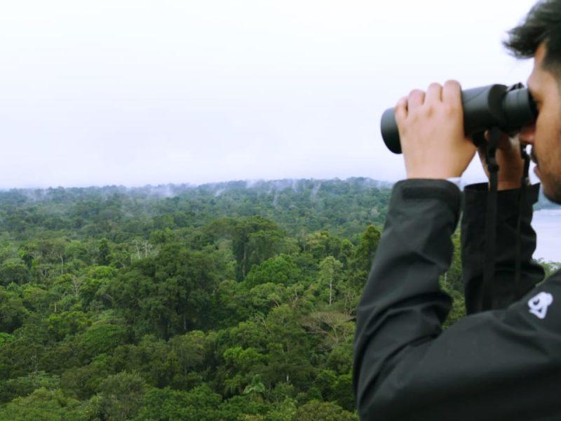 Ecuador Napo Wildlife Center Vogels Spotten