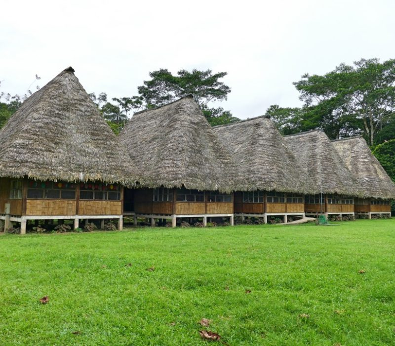 Klaslokalen Van De School In De Amazone In Ecuador