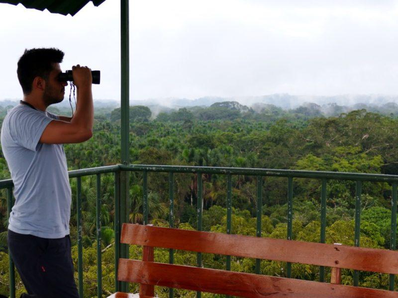 Uitkijktoren Napo Wildlife Center Ecuador