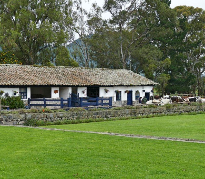 Paardenstallen Van Hacienda Zuleta