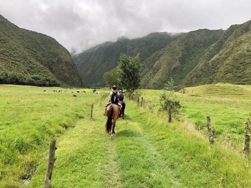 Paardrijden In De Andes Van Ecuador
