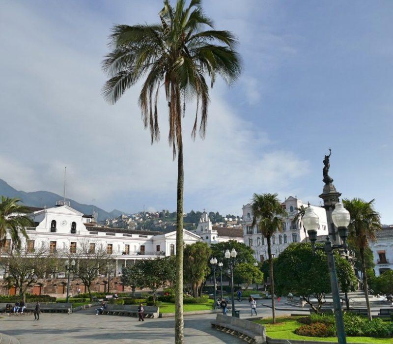 Fietsen In Quito Langs Plaza Grande
