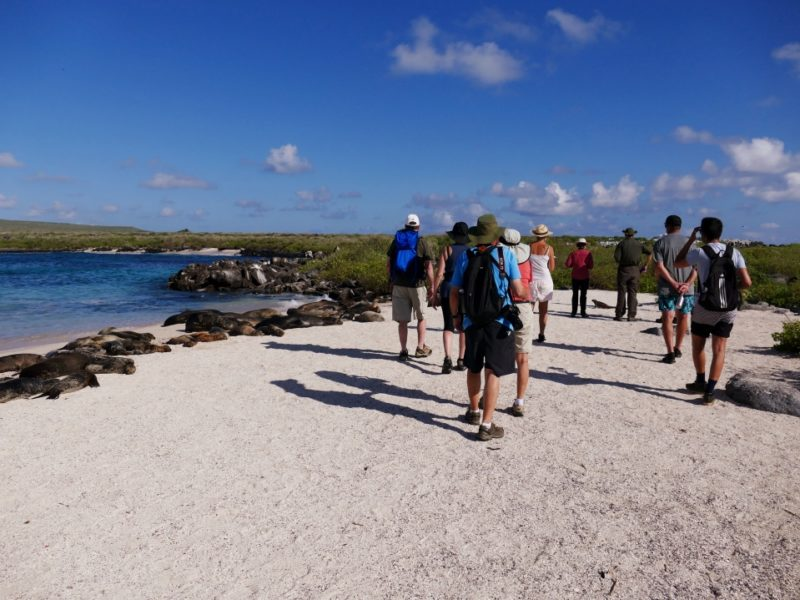 Wandeling Op De Galapagoseilanden