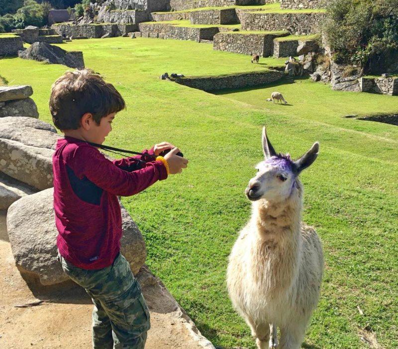 Peru_Machu_Picchu_Familiereis_Kind_Met_Lama