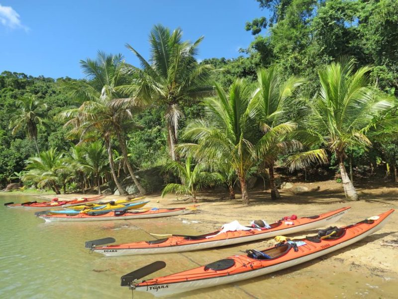 Kajaks Op Het Strand Vol Palmen Bij Paraty In Brazilië