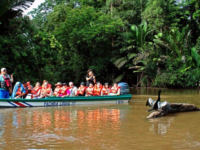 Boottocht Door De Tortuguero Kanalen