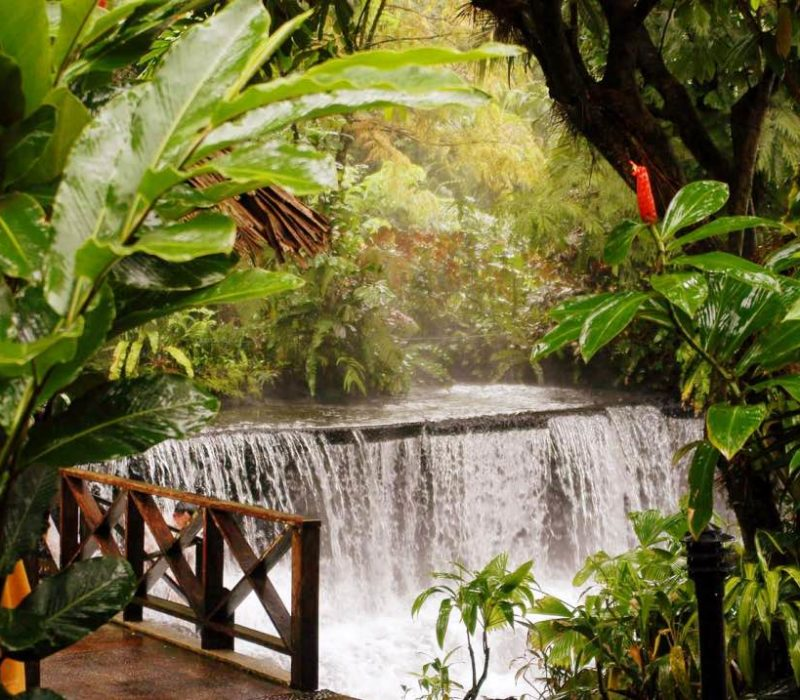 Warmwaterbaden Tabacon In Arenal Costa Rica