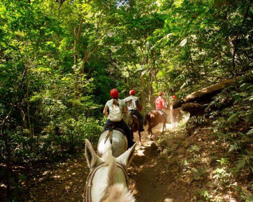 Paardrijden In Guanacaste Costa Rica