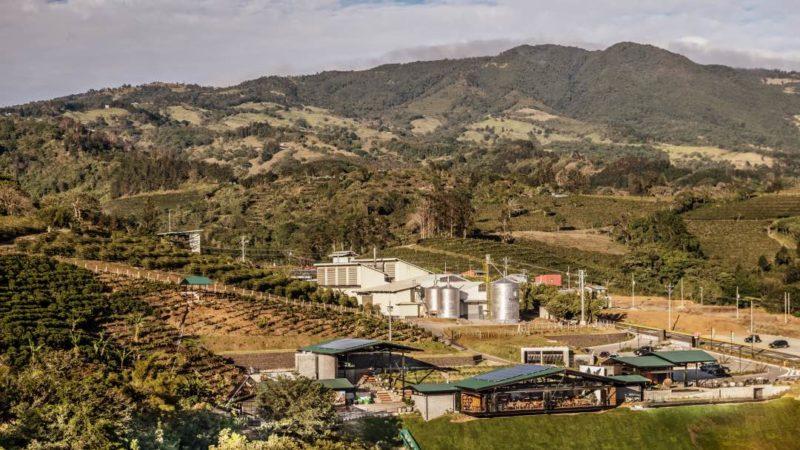 Bezoek Een Van De Koffieplantages In De Centrale Vallei Van Costa Rica