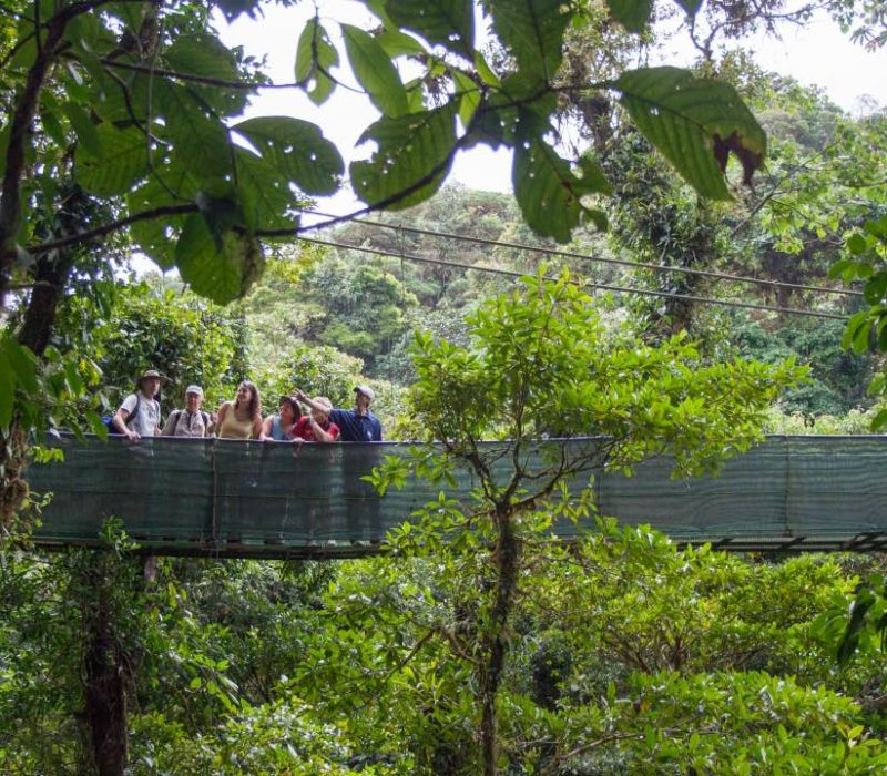 Platform Sky Tram Monteverde Costa Rica