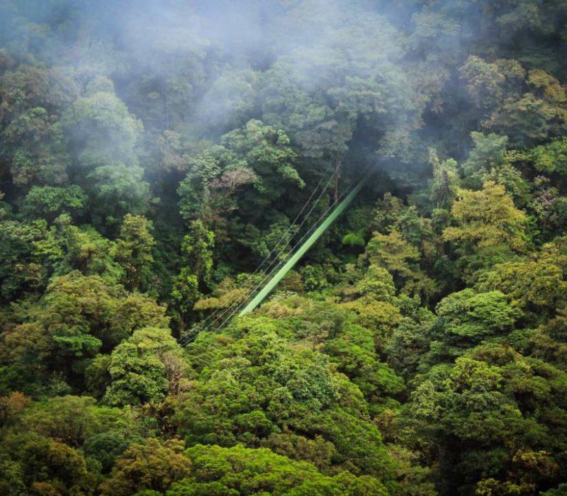 Hanging Bridges In Monteverde Costa Rica