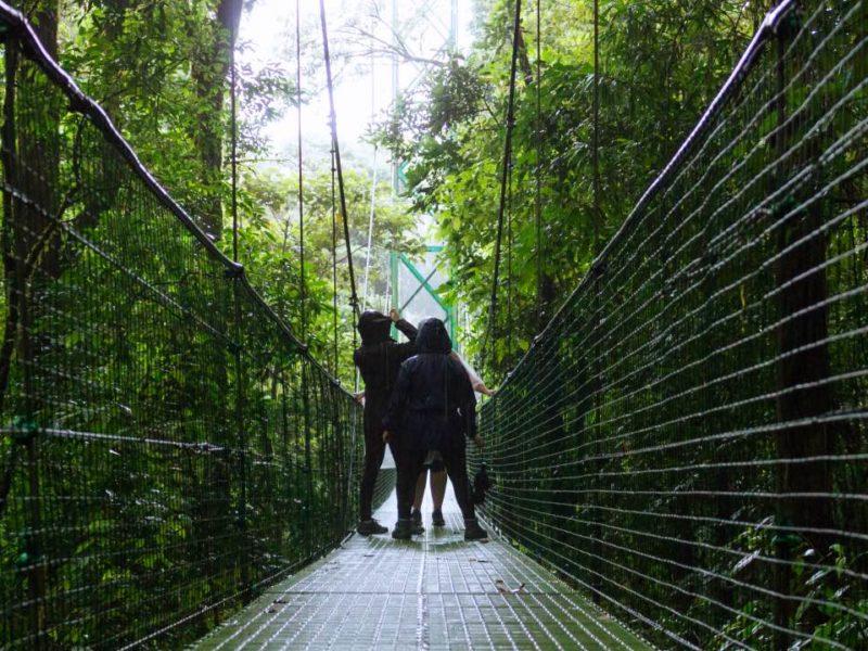 Wandelen Over De Hangende Bruggen In Monteverde Costa Rica