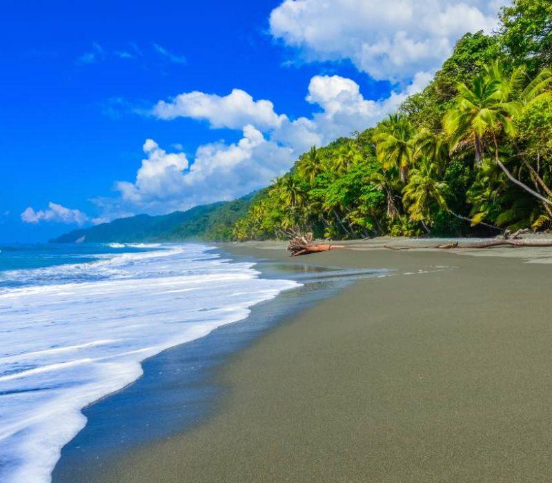 Costa Rica Nationaal Park Corcovado