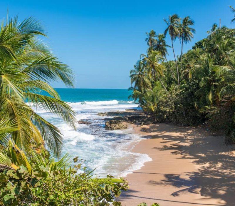 Strand Bij Puerto Viejo De Talamanca In Costa Rica