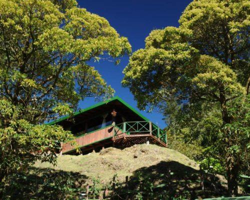 Kamer In De Trogon Lodge