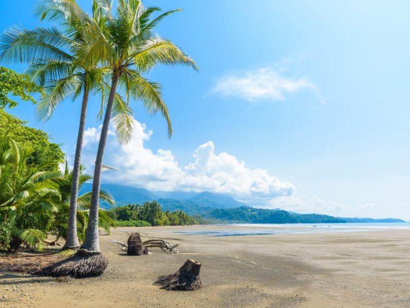 Costa Rica Uvita Strand Met Palmbomen